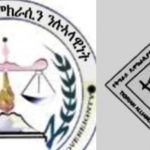 Two Tigray Opposition Groups Announce Possible Merger