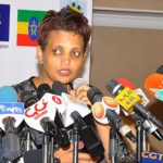 Ethiopian Electoral Board Asks Parliament For $129 million Budget