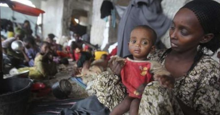 525 People Infected by Cholera Outbreak