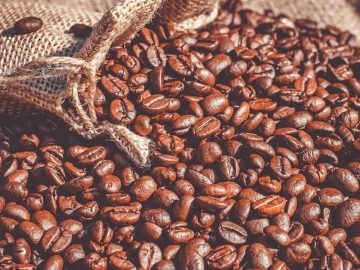 Ethiopia Coffee, Oil Seed Export Hits 1.2 Billion USD