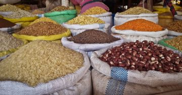 Addis to Host CFS's Conference on Combating Malnutrition in Africa