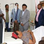 Chikungunya Outbreak Case Rise to 29 Thousand in Dire Dawa