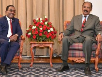 Ambassador Redwan Presents Credentials to Eritrean President